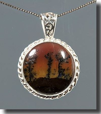 Picture for category Arizona Petrified Wood