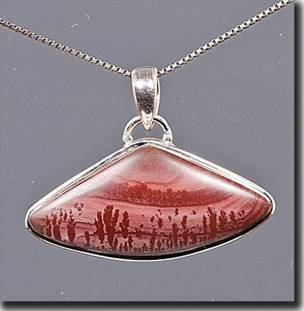 Picture for category New Mexico Apache Jasper