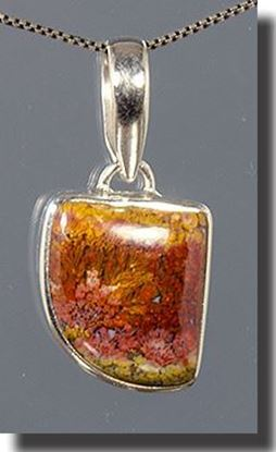 Bloody Basin Plume agate pendant