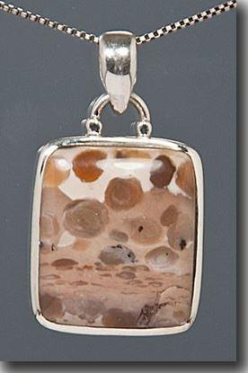 Bogwood Silver Pendant