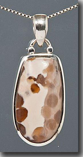 Petrified Bogwood silver Pendant