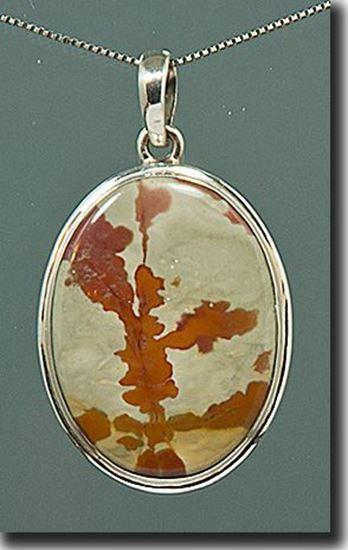 Owyhee War Bonnet Picture Jasper Silver Pendant