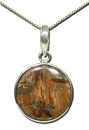 Oregon Morrisonite Picture Jasper Silver Pendant