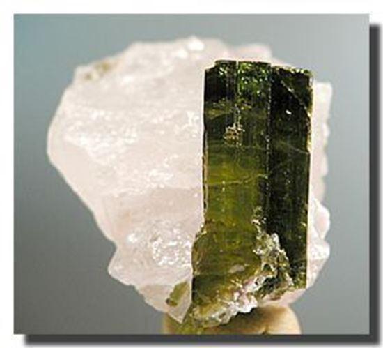 Green Tourmaline in Quartz, Brazil